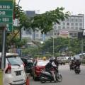 ジャカルタ・モノレール、月内に開発事業再開へ